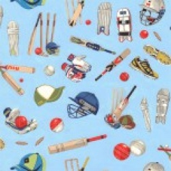 All Rounder - Cricket